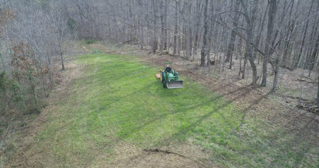 Food Plots In The Woods Are They Worth It Big Game
